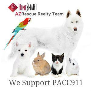 PACC tagged logo 300x300