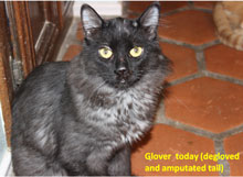 glover-after